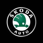 Ремонт Skoda
