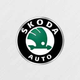 Диагностика и ремонт автомобилей Skoda